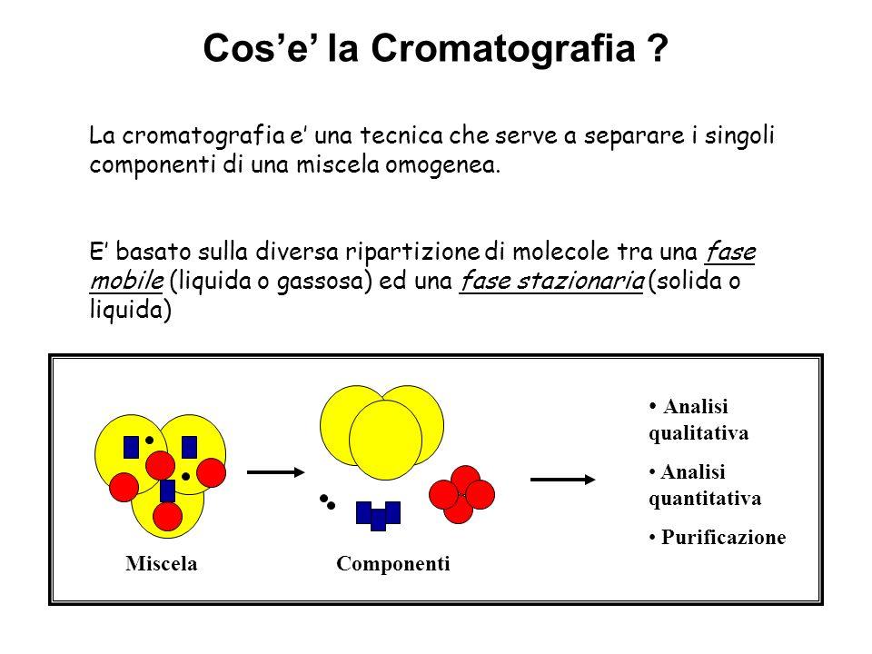Cos'e' la Cromatografia