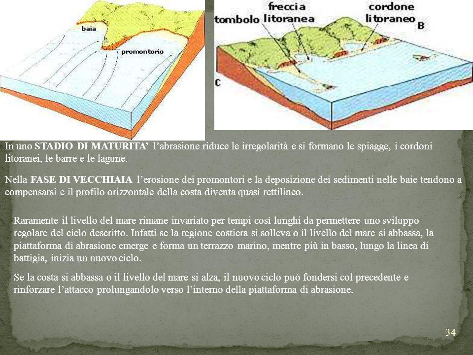 In uno STADIO DI MATURITA' l'abrasione riduce le irregolarità e si formano le spiagge, i cordoni litoranei, le barre e le lagune.