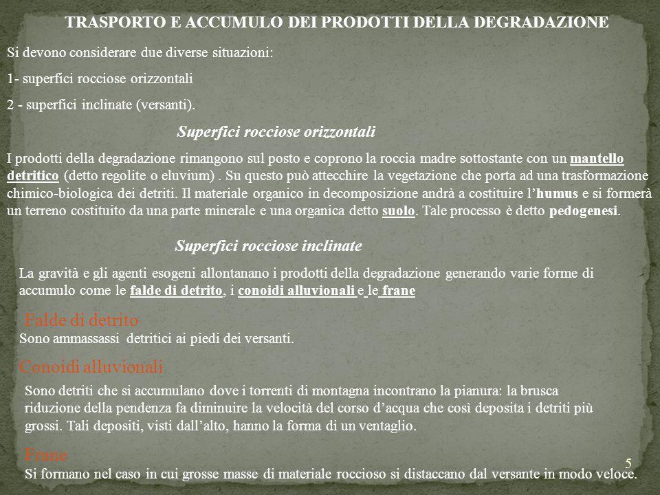 TRASPORTO E ACCUMULO DEI PRODOTTI DELLA DEGRADAZIONE