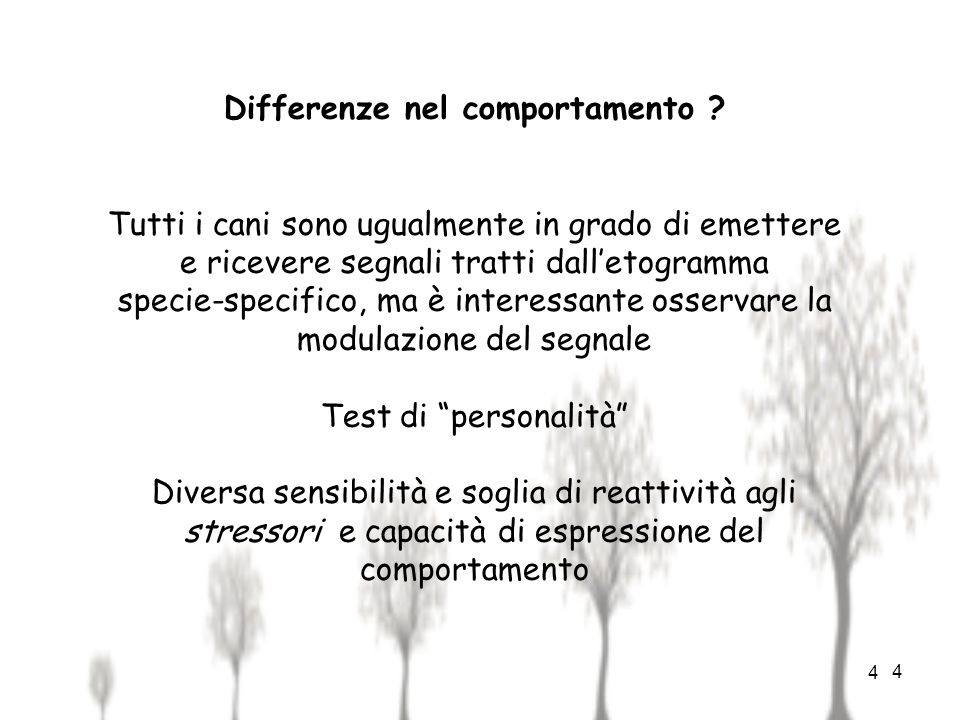 Differenze nel comportamento