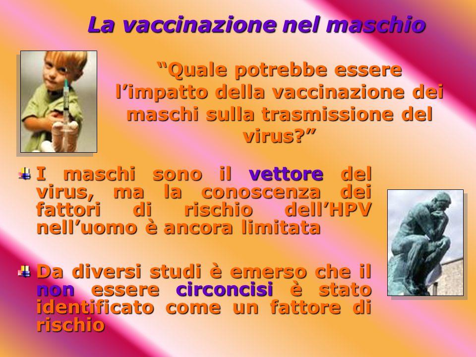 La vaccinazione nel maschio