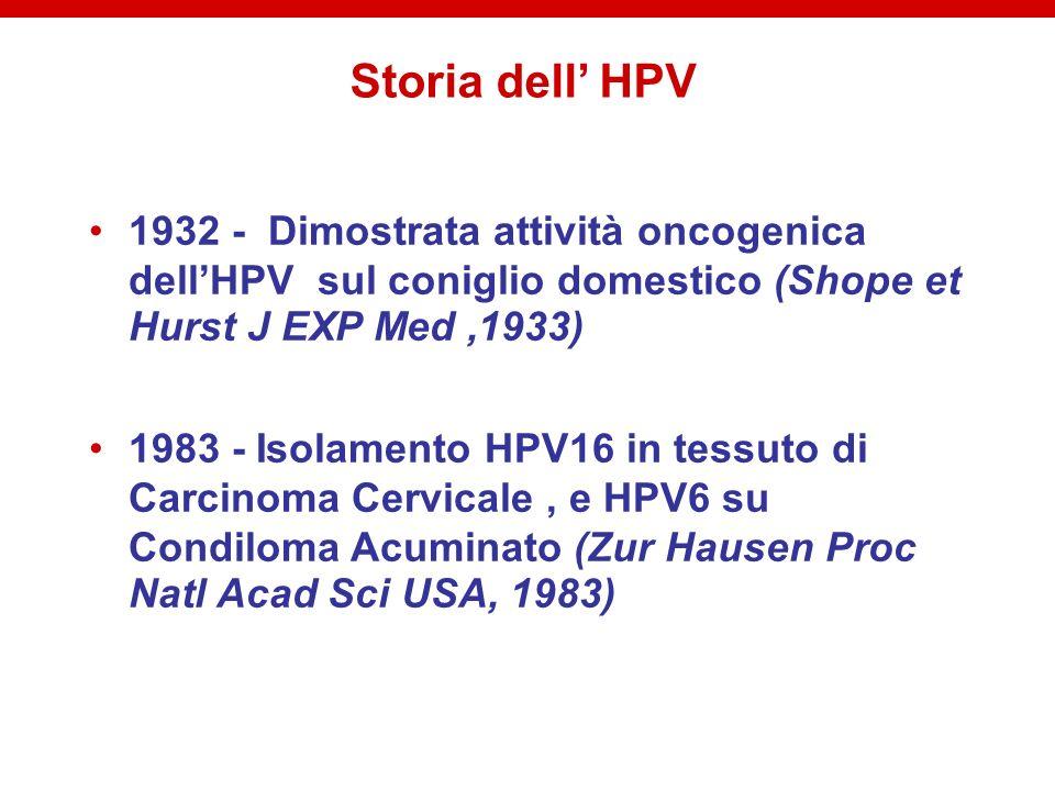 Storia dell' HPV 1932 - Dimostrata attività oncogenica dell'HPV sul coniglio domestico (Shope et Hurst J EXP Med ,1933)