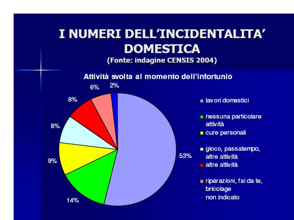La principale attività è quella domestica con una percentuale del 53%.