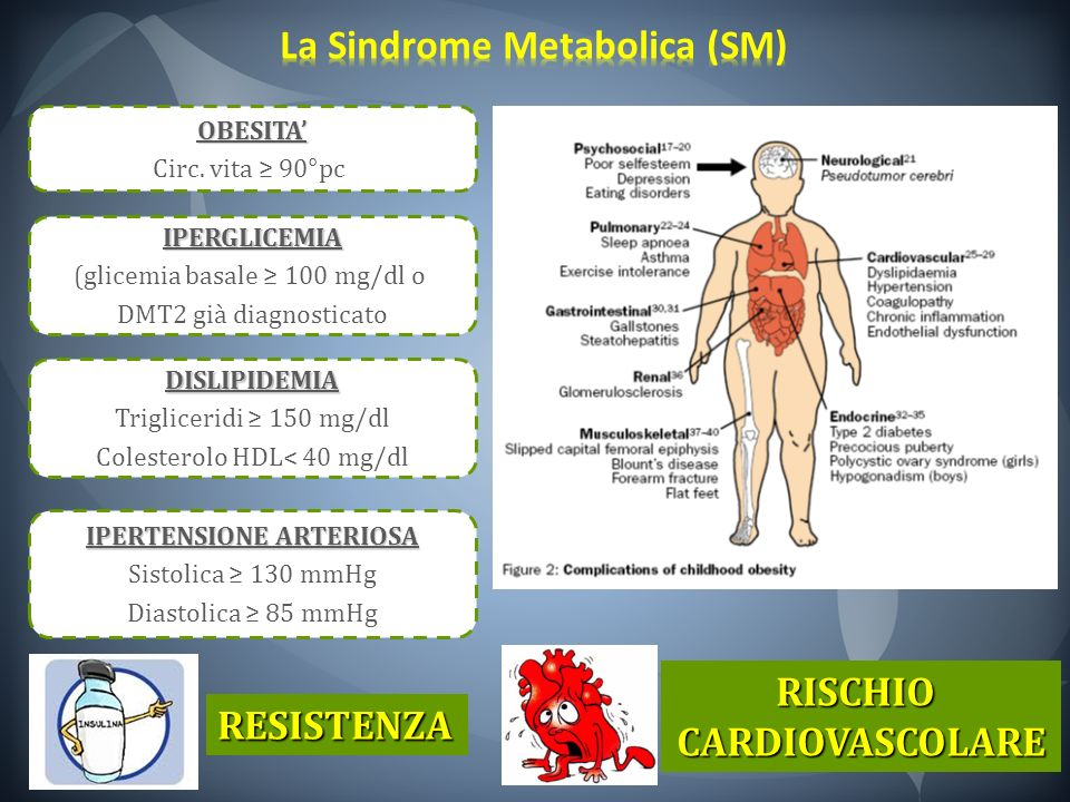 La Sindrome Metabolica (SM)