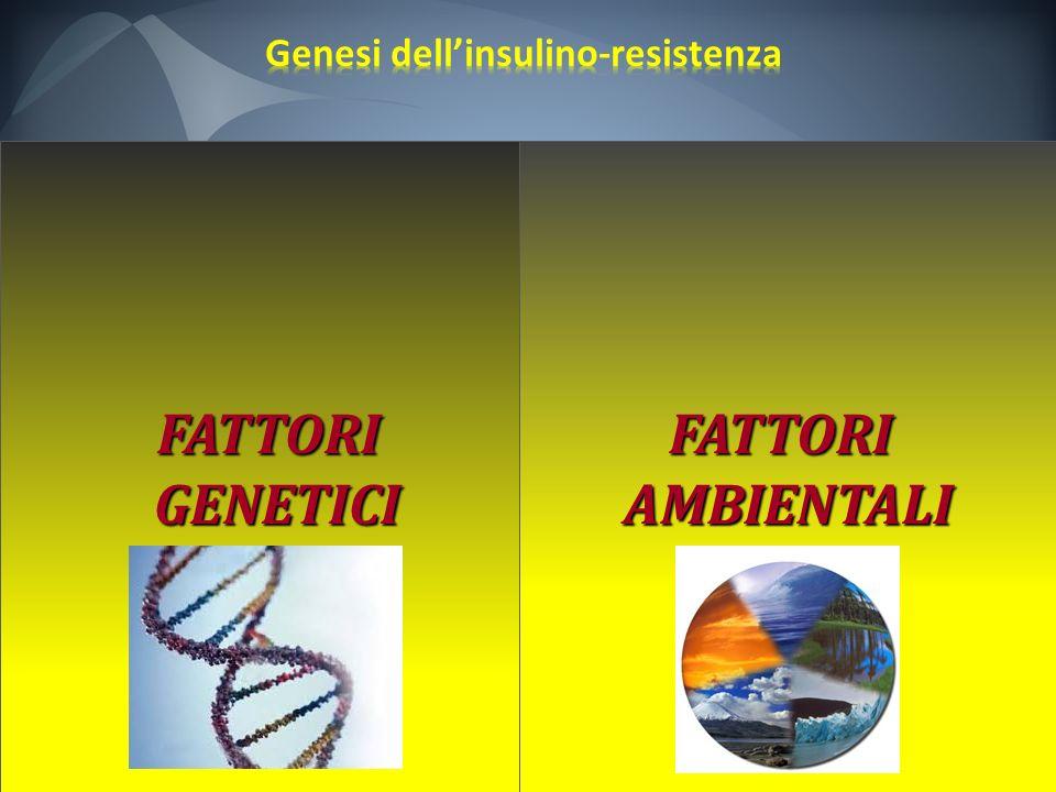 Genesi dell'insulino-resistenza