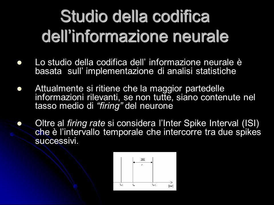 Studio della codifica dell'informazione neurale