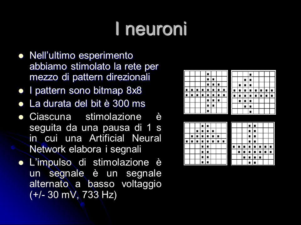 I neuroni Nell'ultimo esperimento abbiamo stimolato la rete per mezzo di pattern direzionali. I pattern sono bitmap 8x8.