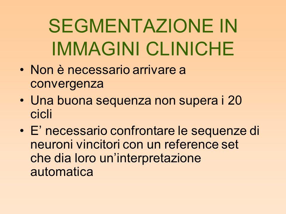SEGMENTAZIONE IN IMMAGINI CLINICHE