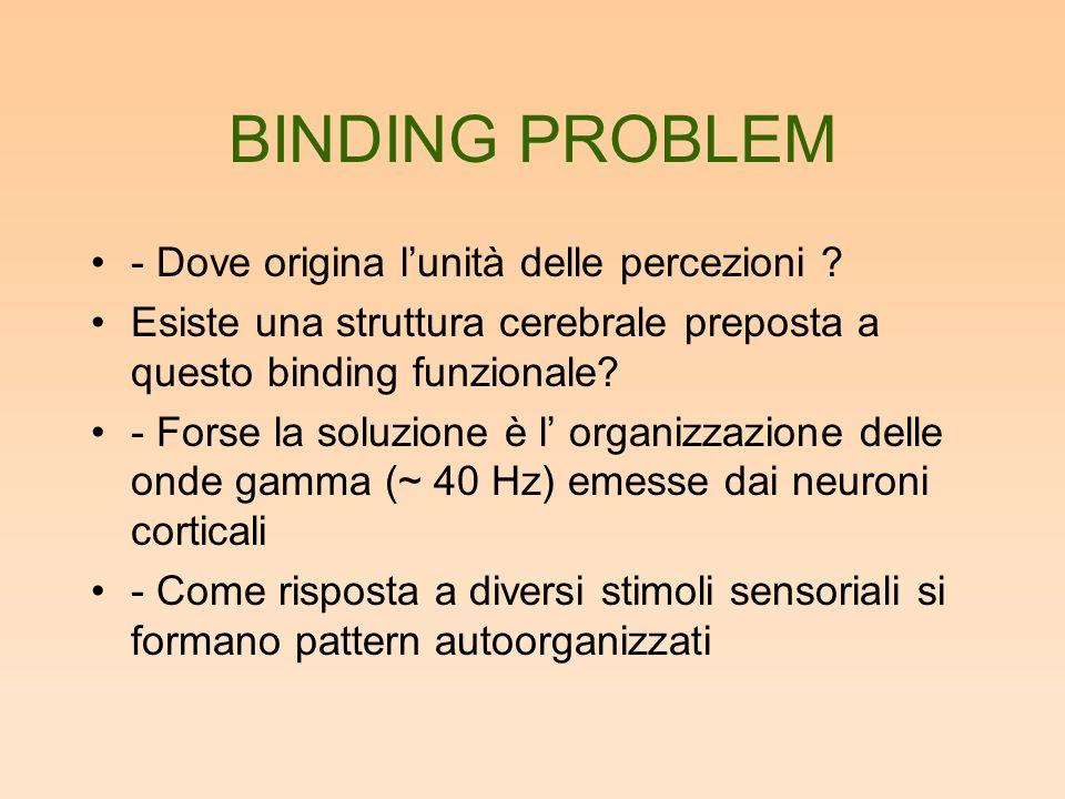 BINDING PROBLEM - Dove origina l'unità delle percezioni