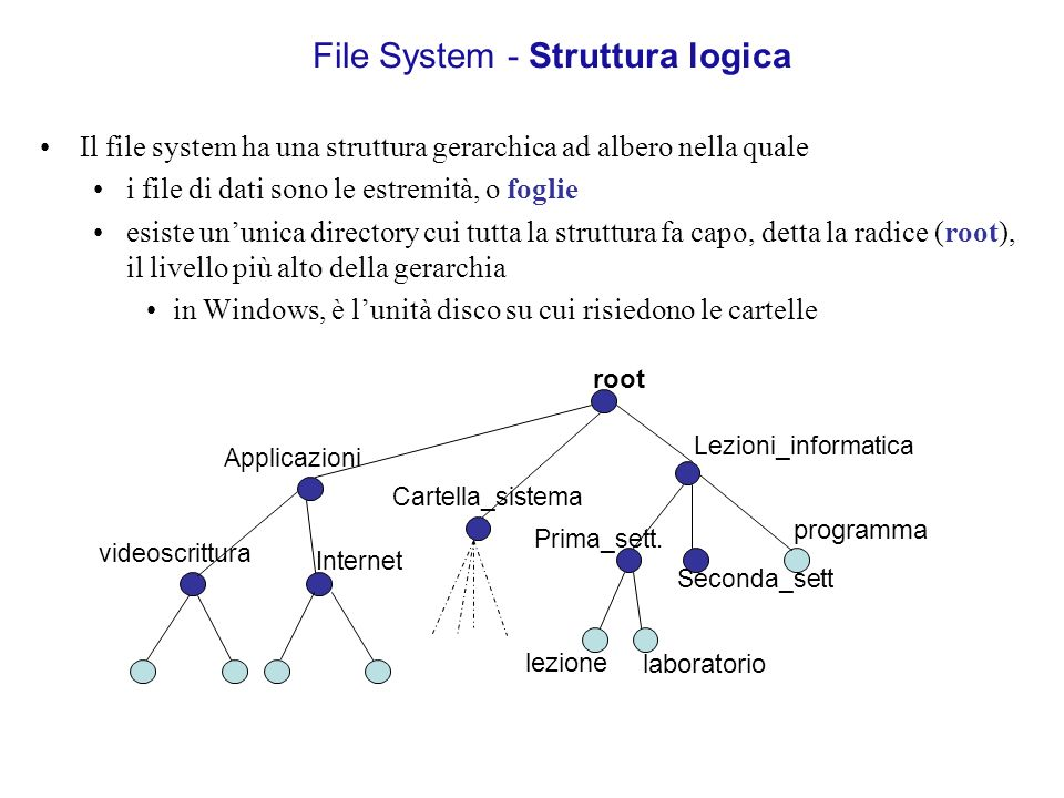 File System - Struttura logica