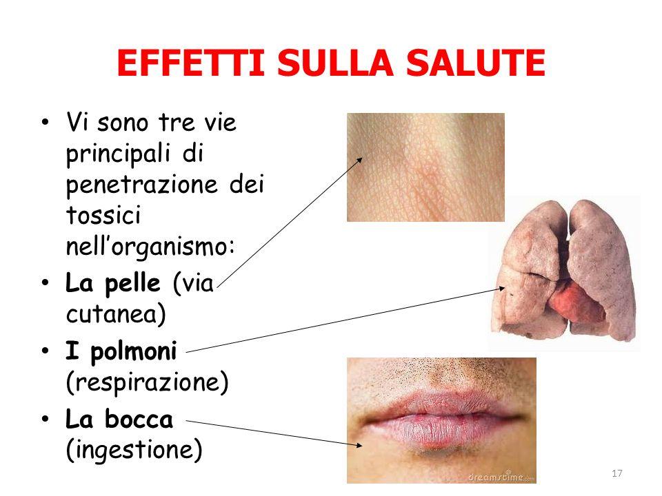 EFFETTI SULLA SALUTE Vi sono tre vie principali di penetrazione dei tossici nell'organismo: La pelle (via cutanea)