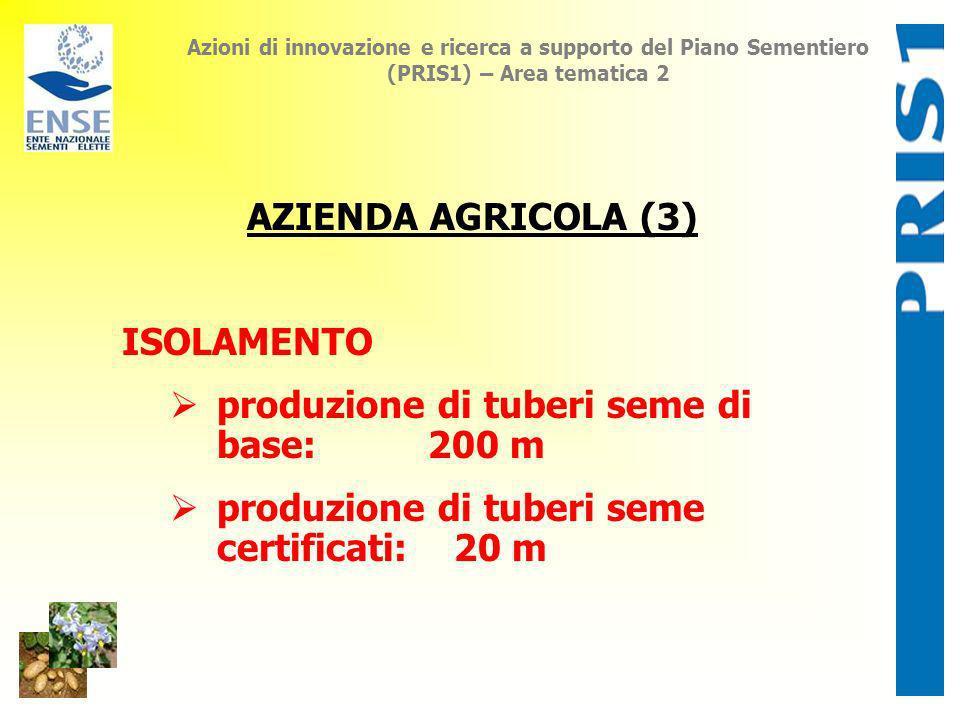 produzione di tuberi seme di base: 200 m