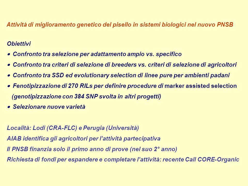 Attività di miglioramento genetico del pisello in sistemi biologici nel nuovo PNSB