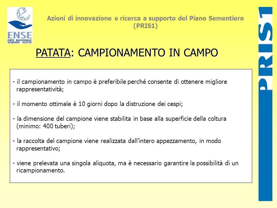 PATATA: CAMPIONAMENTO IN CAMPO