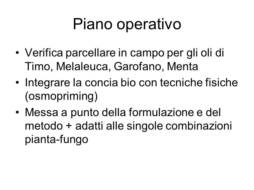 Piano operativo Verifica parcellare in campo per gli oli di Timo, Melaleuca, Garofano, Menta.