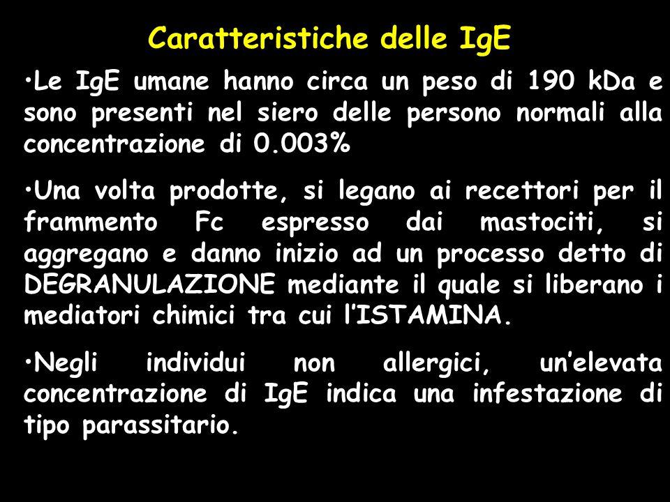 Caratteristiche delle IgE