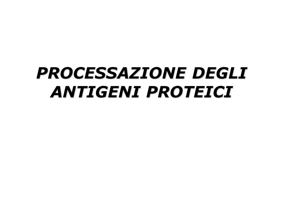 PROCESSAZIONE DEGLI ANTIGENI PROTEICI