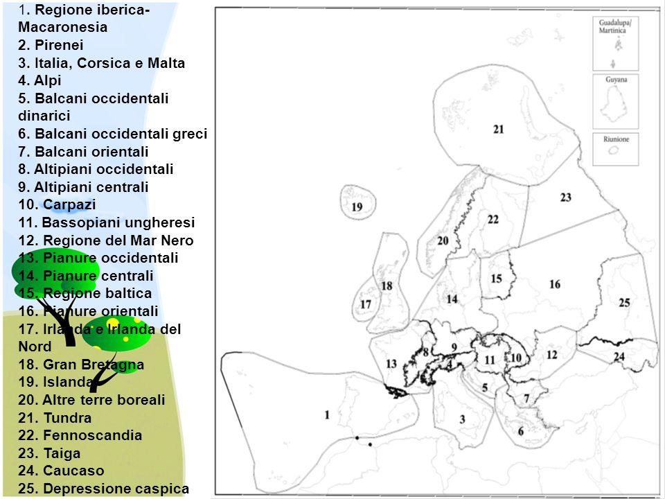 1. Regione iberica-Macaronesia