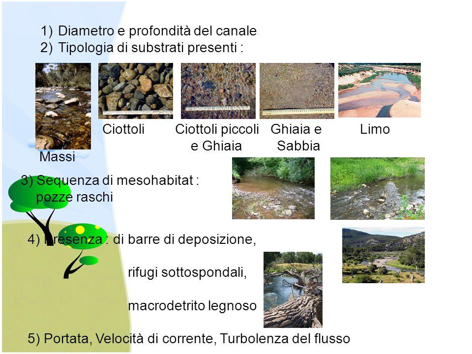 Diametro e profondità del canale