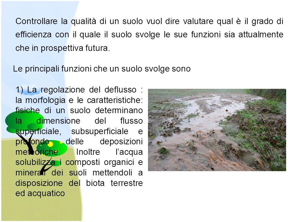 Controllare la qualità di un suolo vuol dire valutare qual è il grado di efficienza con il quale il suolo svolge le sue funzioni sia attualmente che in prospettiva futura.
