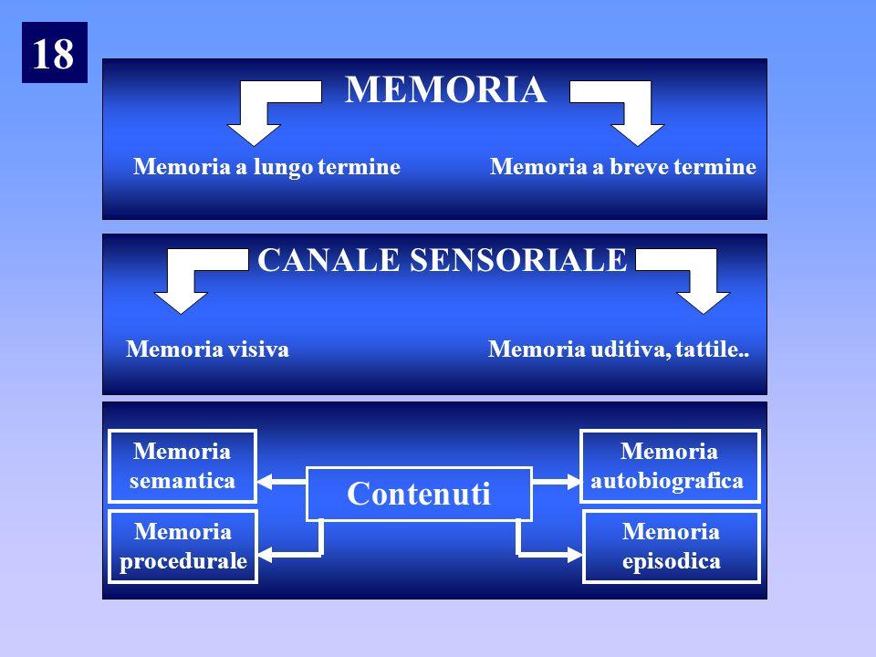 18 MEMORIA CANALE SENSORIALE Contenuti