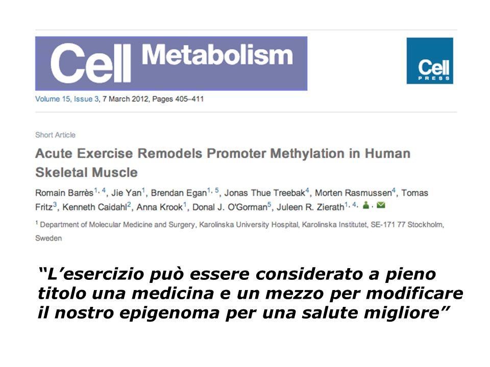L'esercizio può essere considerato a pieno titolo una medicina e un mezzo per modificare il nostro epigenoma per una salute migliore