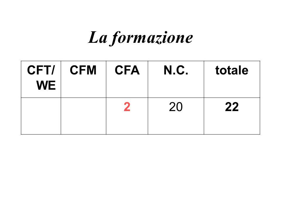 La formazione CFT/WE CFM CFA N.C. totale 2 20 22