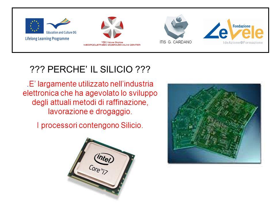 I processori contengono Silicio.