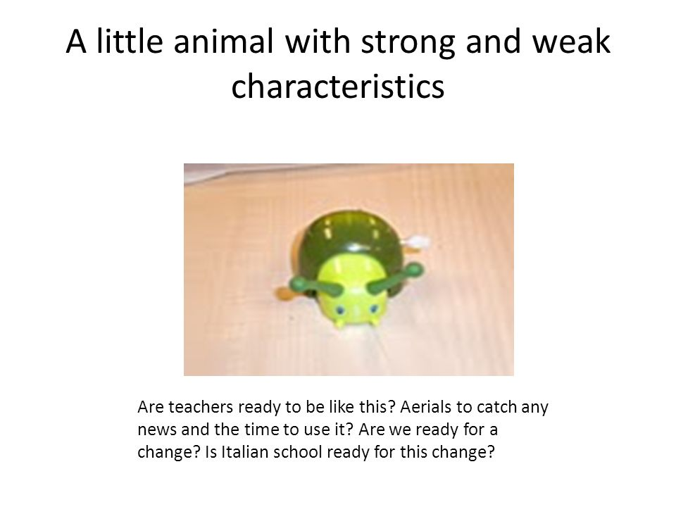 A little animal with strong and weak characteristics