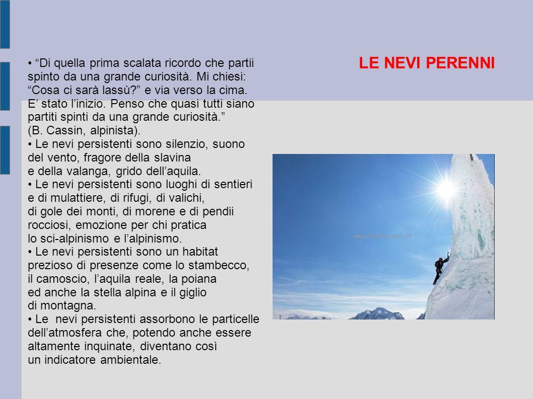 LE NEVI PERENNI • Di quella prima scalata ricordo che partii