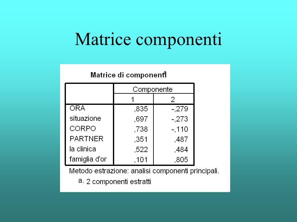 Matrice componenti