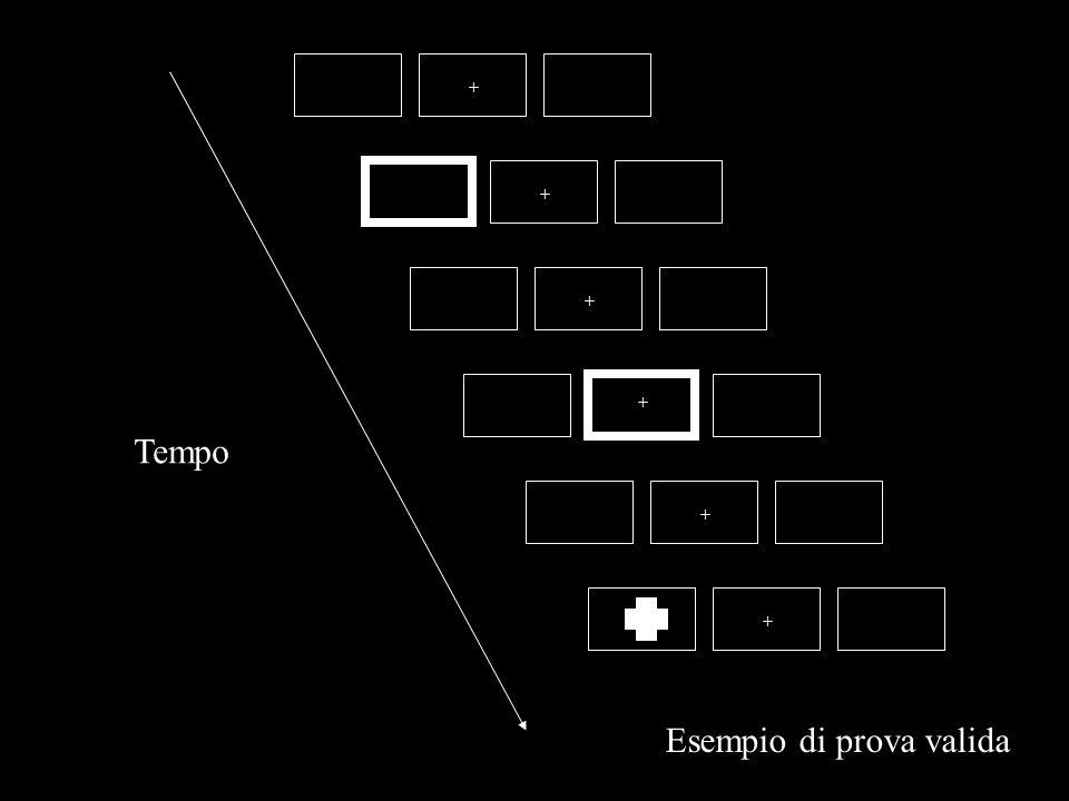 Klein (1988): INIBIZIONE DI RITORNO