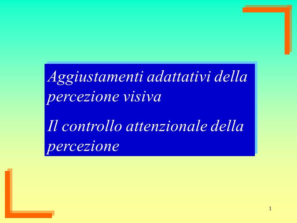 Aggiustamenti adattativi della percezione visiva