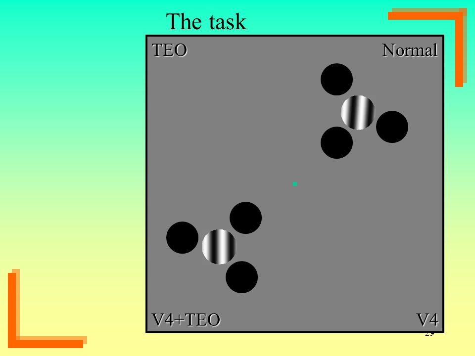 The task TEO Normal V4+TEO V4