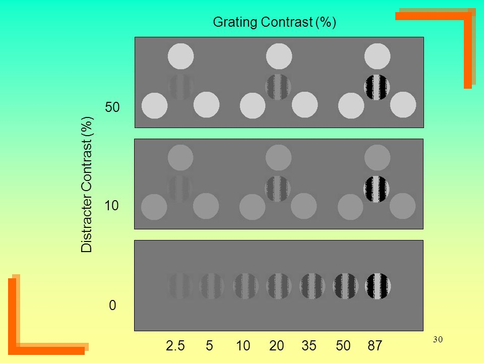 Grating Contrast (%) 50 Distracter Contrast (%) 10 5 2.5 87 50 35 20 10