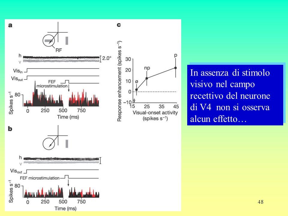 In assenza di stimolo visivo nel campo recettivo del neurone di V4 non si osserva alcun effetto…