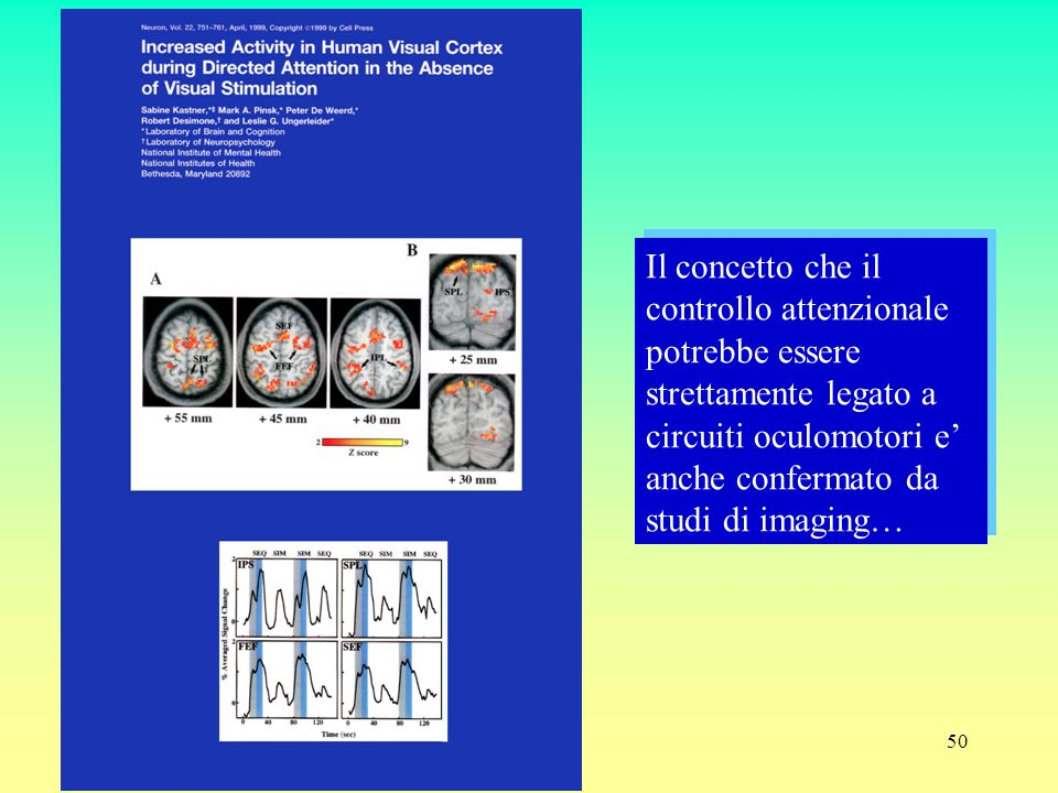 Il concetto che il controllo attenzionale potrebbe essere strettamente legato a circuiti oculomotori e' anche confermato da studi di imaging…