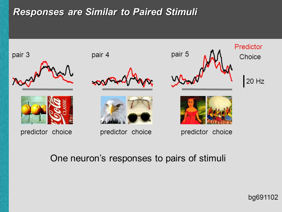 Responses are Similar to Paired Stimuli