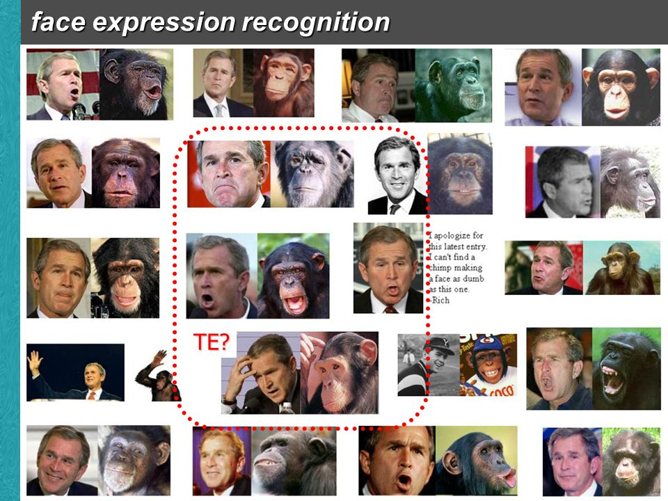 face expression recognition