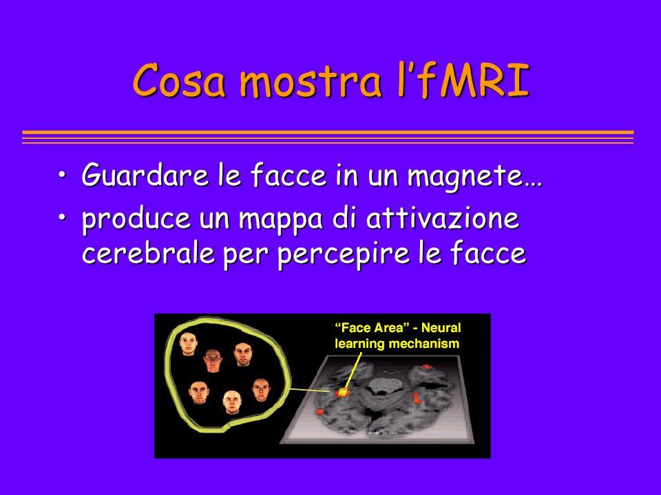 Cosa mostra l'fMRI Guardare le facce in un magnete…