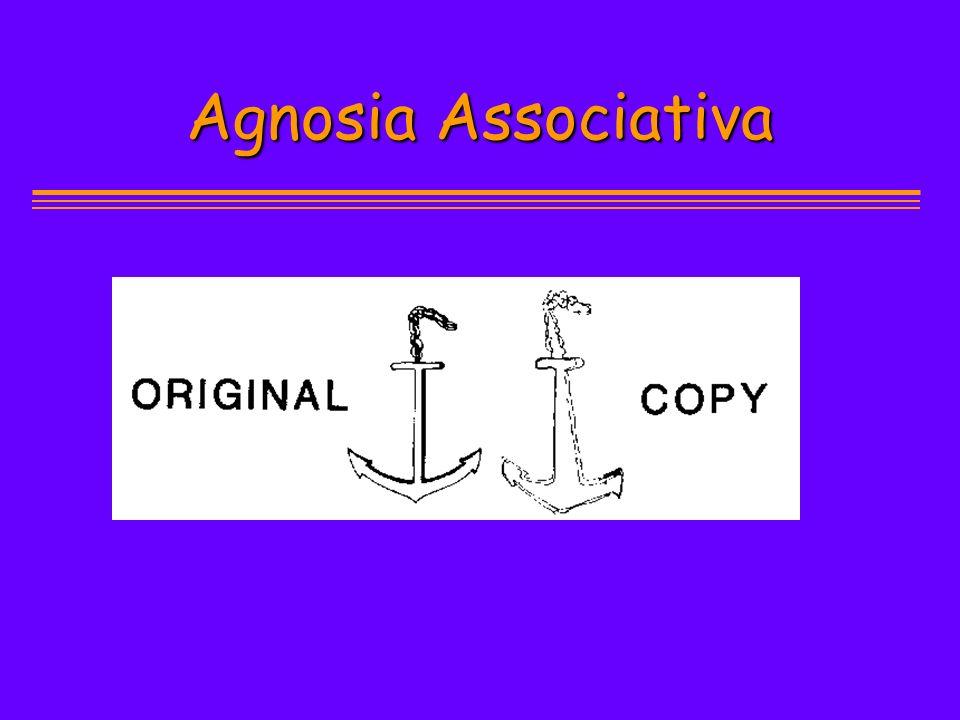 Agnosia Associativa