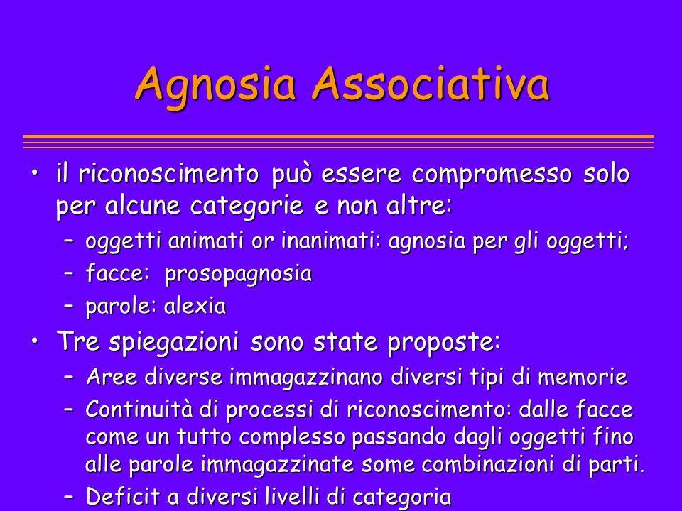 Agnosia Associativa il riconoscimento può essere compromesso solo per alcune categorie e non altre: