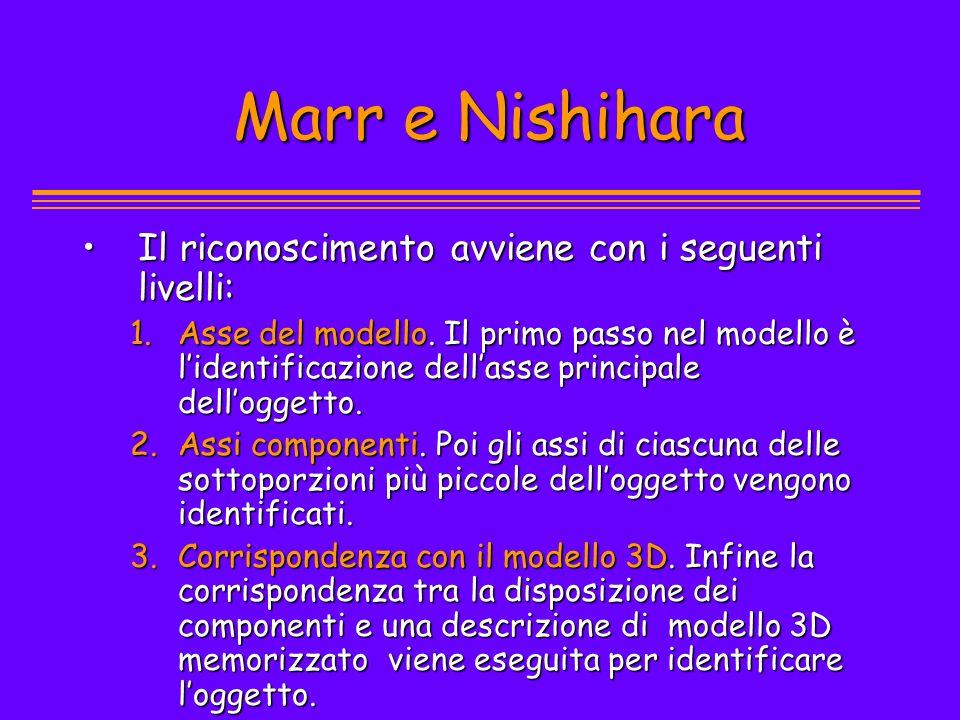 Marr e Nishihara Il riconoscimento avviene con i seguenti livelli: