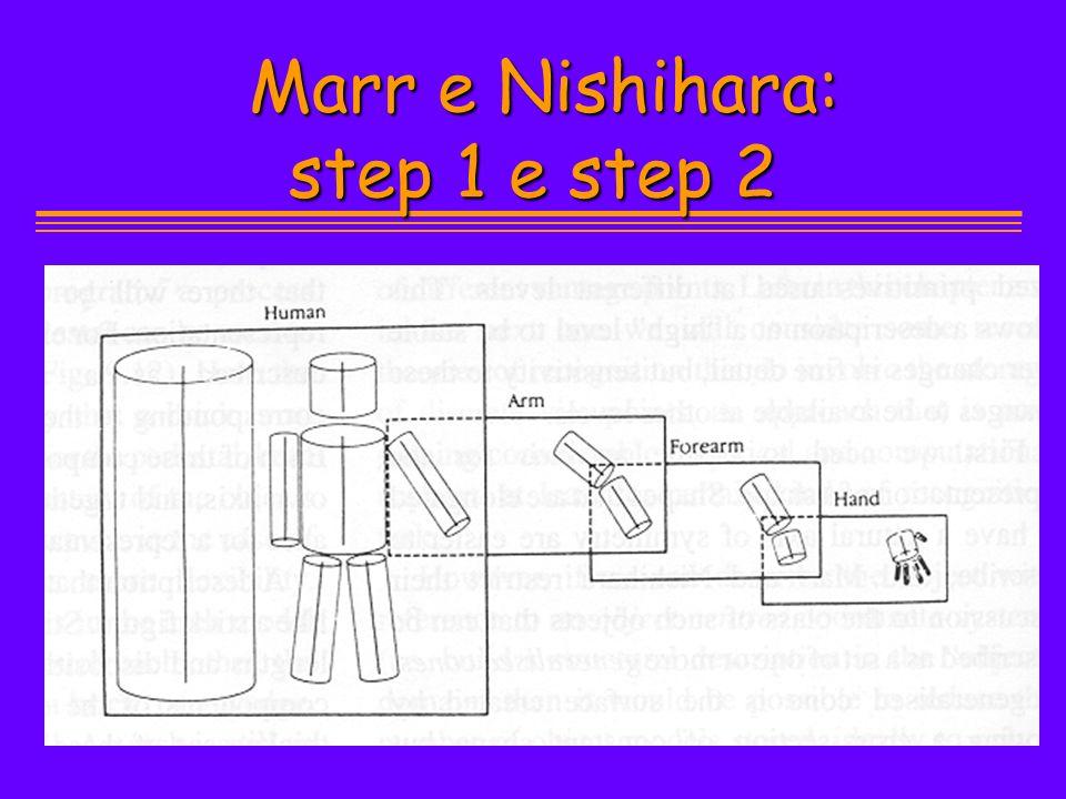 Marr e Nishihara: step 1 e step 2