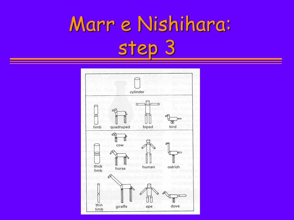 Marr e Nishihara: step 3