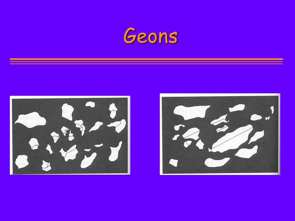 Geons