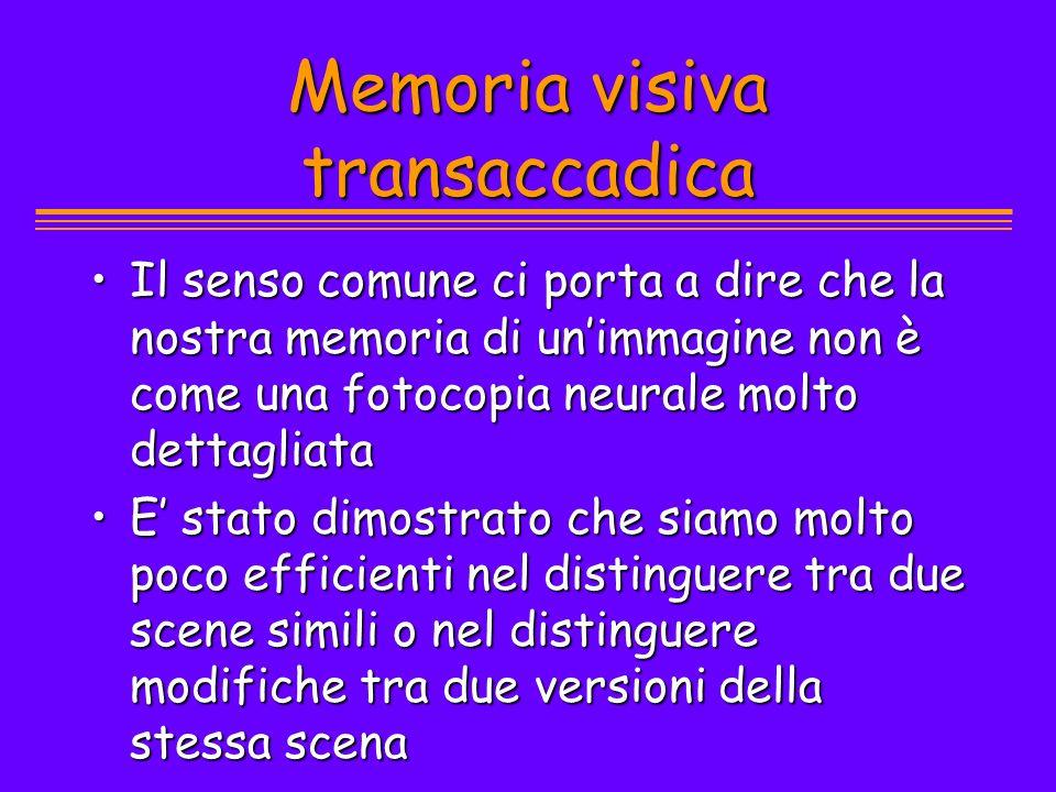 Memoria visiva transaccadica