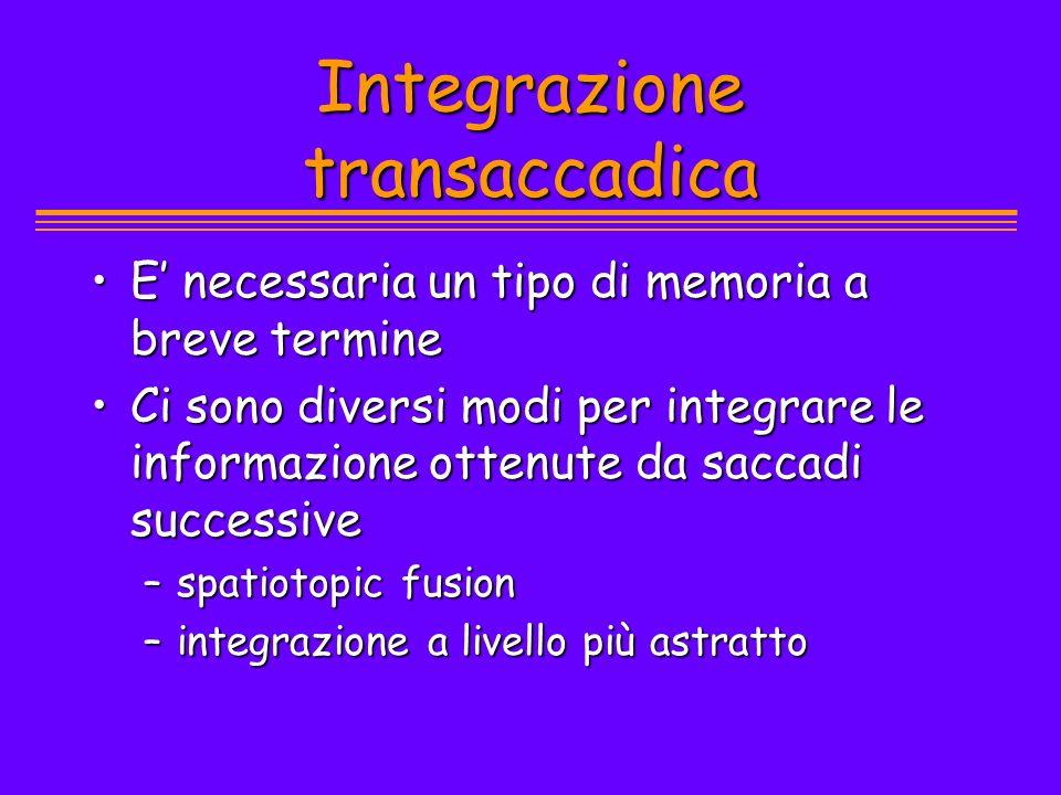 Integrazione transaccadica
