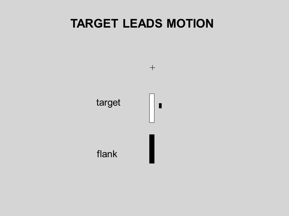 TARGET LEADS MOTION + target flank