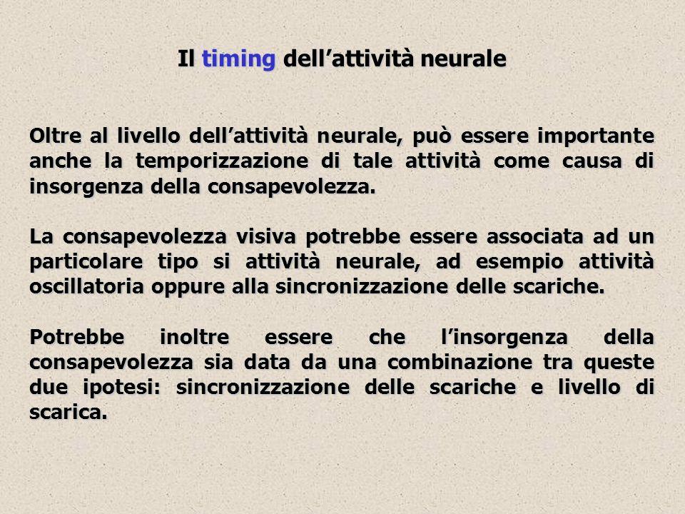 Il timing dell'attività neurale